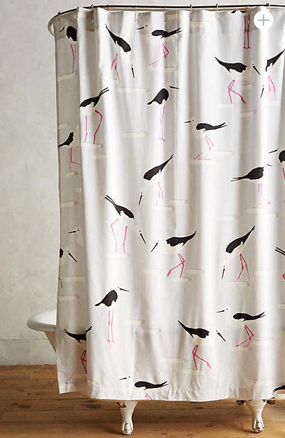 beach gull shower curtain